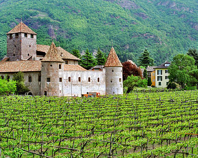 Castle And Vineyard In Italy Print by Greg Matchick