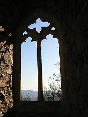 Castle  Another Window Art Print by Ron Hayes