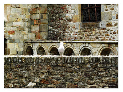 Photograph - Castle Bird by Joan  Minchak