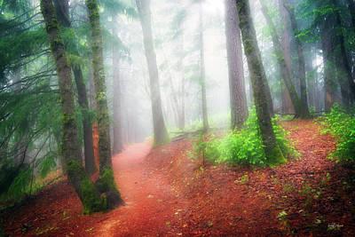 Photograph - Castle Crags Trail by Leland D Howard