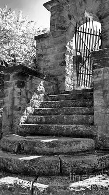 Photograph - Castle Gate by E B Schmidt