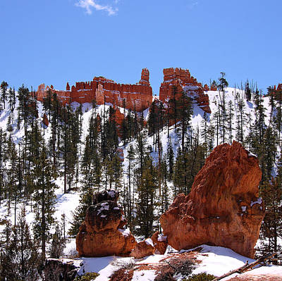 Photograph - Castle In Bryce Canyon by Viktor Savchenko