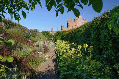 Photograph - Castle Mey Garden #2 by Elvis Vaughn