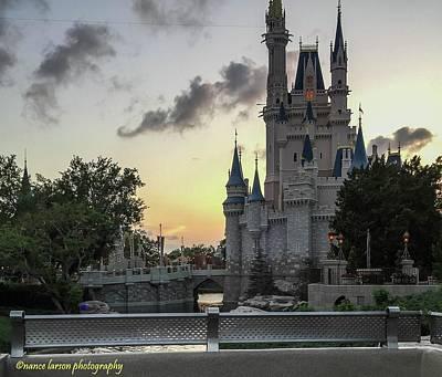 Photograph - Castle by Nance Larson