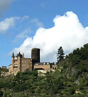 Photograph - Castle On The Rhine by Nancy Merkle