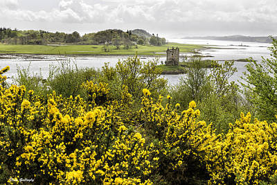 Photograph - Castle Stalker by Fran Gallogly