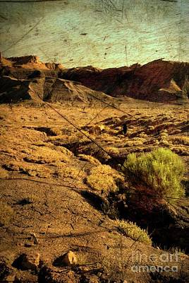 Mixed Media - Castle Valley Utah Usa by Bob Pardue