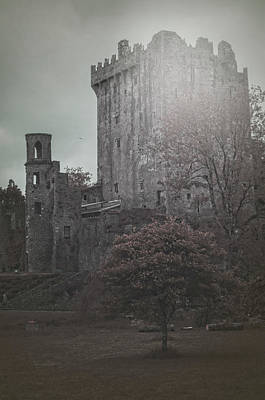 Photograph - Castle Vignette by Sharon Popek