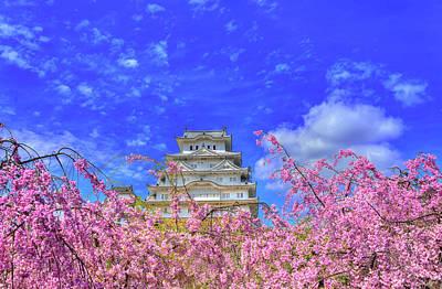 Castle's Blossom Art Print by Midori Chan