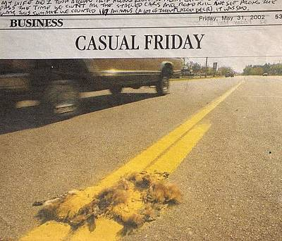 Roadkill Drawing - Casual Friday by William Douglas