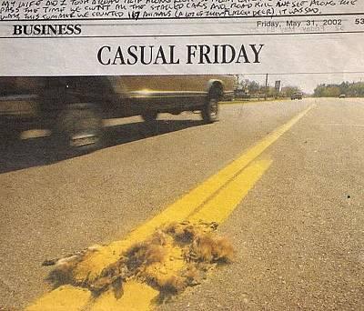 Casual Friday Original
