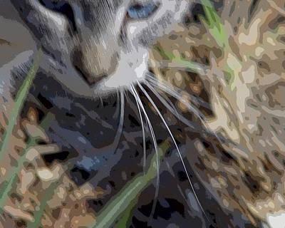Cat A Hunting Original