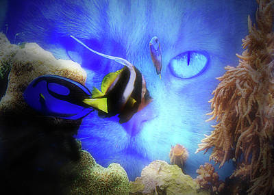 Wicked Kitty Photograph - Cat And Fish Super Cute Funny Cat And Fish Tank by Stephanie Laird