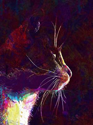 Digital Art - Cat Animal Black White Feline Pet  by PixBreak Art
