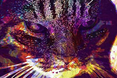 Digital Art - Cat Animal Cat Face Cat S Eyes  by PixBreak Art
