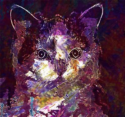 Digital Art - Cat Animal Young Cat Pet Cat Face  by PixBreak Art