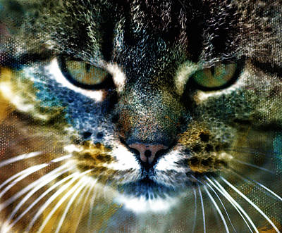 Graphical Painting - Cat Art by Frank Tschakert