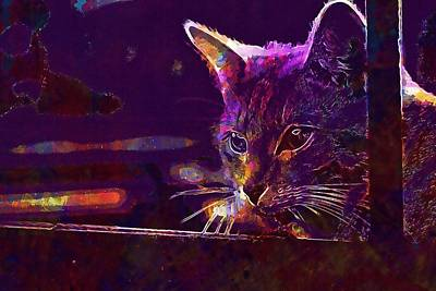 Digital Art - Cat Autumn Stainless Evening Light  by PixBreak Art