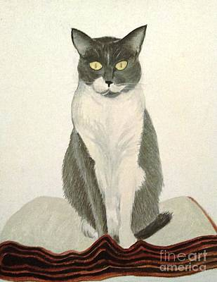 Painting - Cat Blanket by Stacy C Bottoms