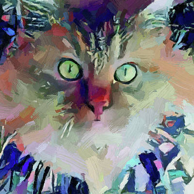 Digital Art - Cat Blue by Yury Malkov