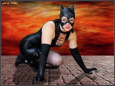 Photograph - Cat Crawl by Jon Volden