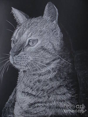 Cat Art Print by Cybele Chaves