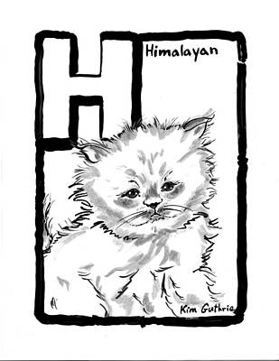 Wall Art - Painting - Cat Drawing Himalayan by Kim Guthrie