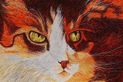 Painting - Cat Eye by Shahid Muqaddim