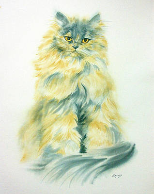 Cat Eyes Art Print by Linda Eades Blackburn