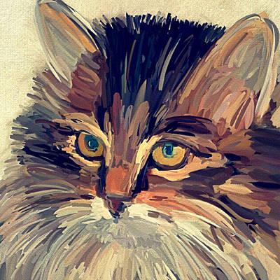Kitty Digital Art - Cat Face Portrait by Yury Malkov