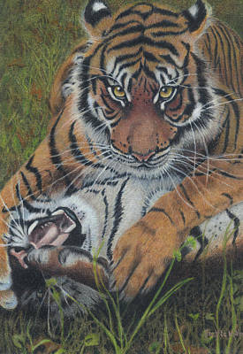 Painting - Cat Fight by Jackie Little Miller