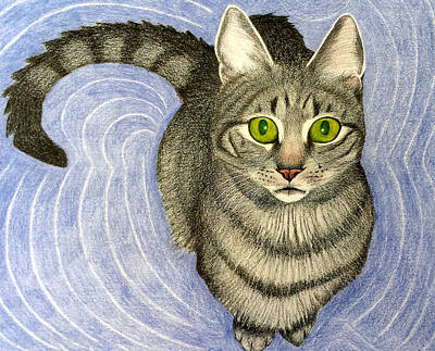 Susan Conner Drawing - Cat From Above by Susan Conner