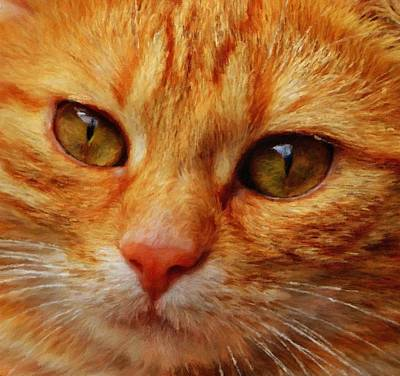 Royalty Free Images Painting - Cat - Id 16218-130645-8619 by S Lurk
