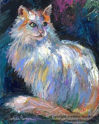 Photograph - Cat In A Sun Painting By Svetlana by Svetlana Novikova