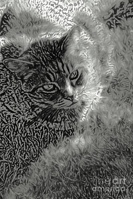 Animal Lover Digital Art - Cat In The Shade Abstract by Cheryl Rose