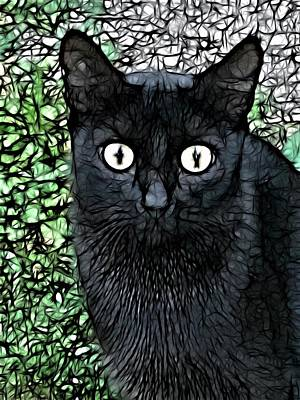 Digital Art - Cat  by Jeff Iverson