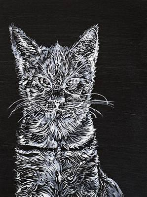 Painting - Cat Jim by Fabrizio Cassetta