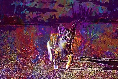 Digital Art - Cat Kitten Cat Baby Mackerel  by PixBreak Art