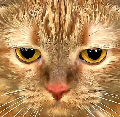Cat Musya Art Print by Sergey Lukashin