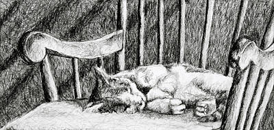 Drawing - Cat Nap I by Robert Decker