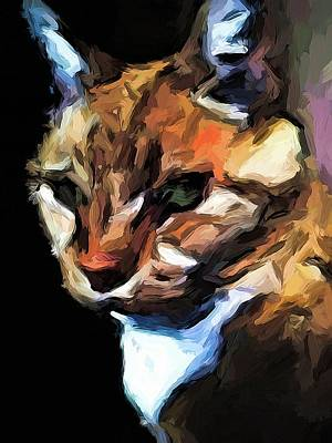 Digital Art - Cat Of Gold In The Light And Shadows by Jackie VanO