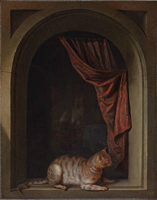 Painting - Cat On A Balustrade by Gerrit Dou