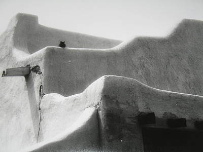 Wall Art - Photograph - Cat On A Hot Adobe Roof by Lucy Moorman