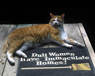 Art Print featuring the photograph Cat On Dull Women Mat by Sally Weigand