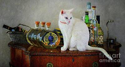 Photograph - Cat On The Liquor Cabinet by John Kolenberg