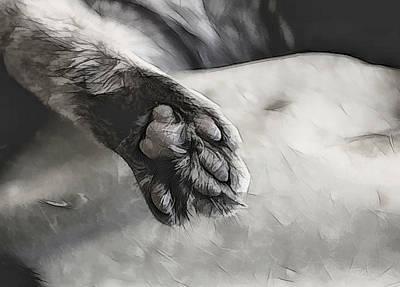Digital Art - Cat Pad  by Aliceann Carlton