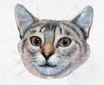 Cat Painting, Hand Made,watercolor,illustration  Original by Yaroslav CHYZHEVSKYI