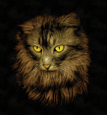 Photograph - Cat Painting Neo Rembrandt Style by Pixabay