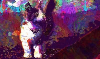 Digital Art - Cat Small Cute Pete  by PixBreak Art
