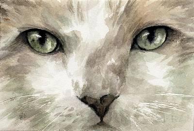 Cat Specific Disdain Art Print